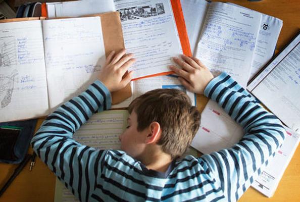 Học sinh học lực trung bình nên thuê gia sư lớp 5 dạy kèm